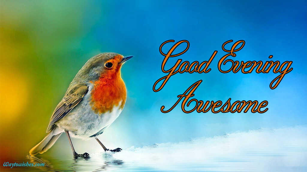 Good Evening Awesome