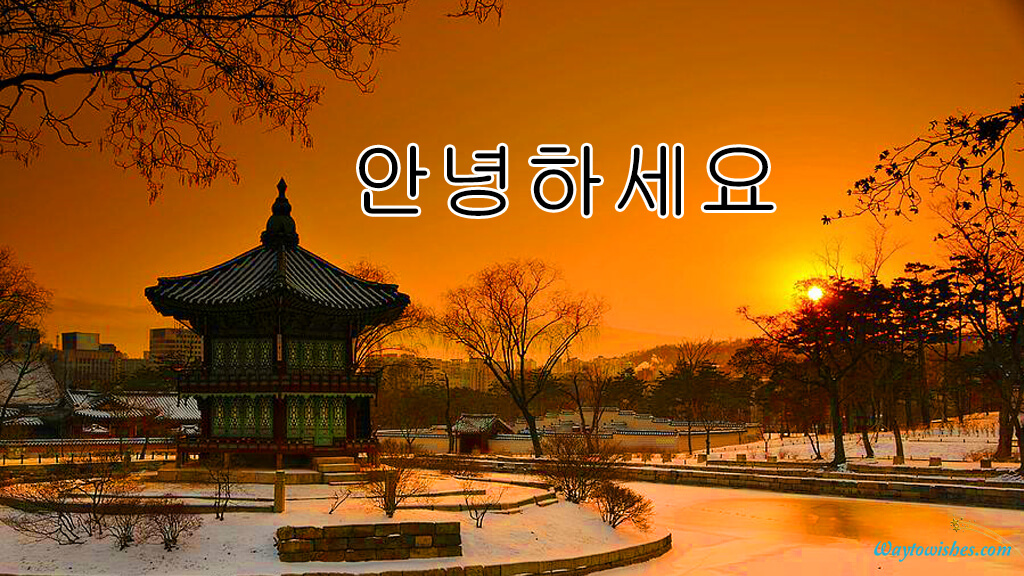 Good Evening In South Korean