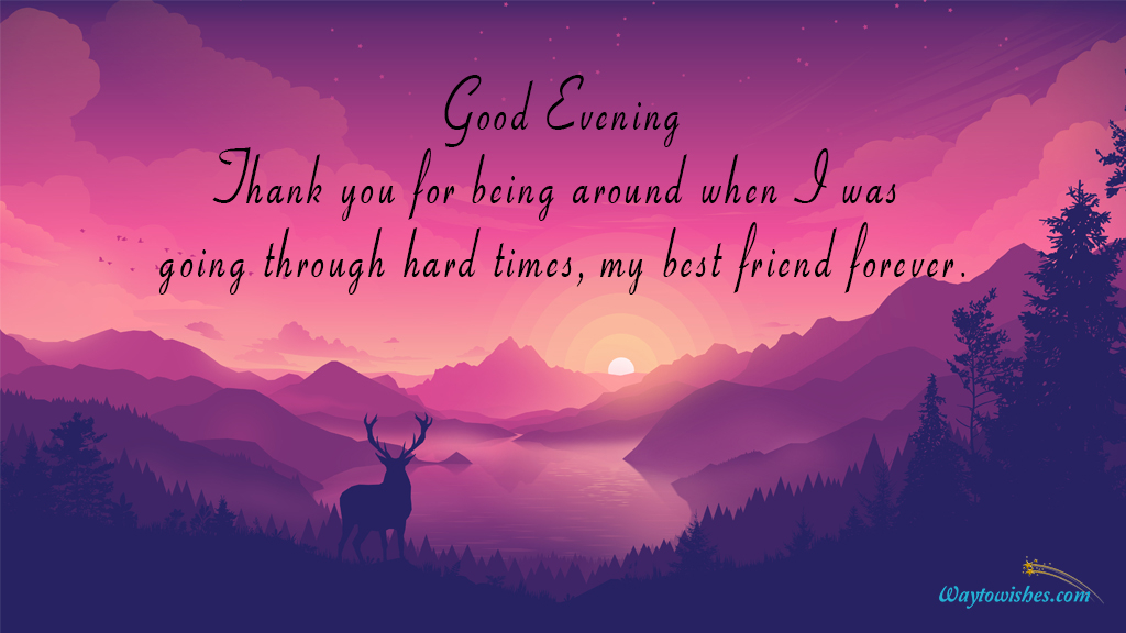 Thank You For Being Around
