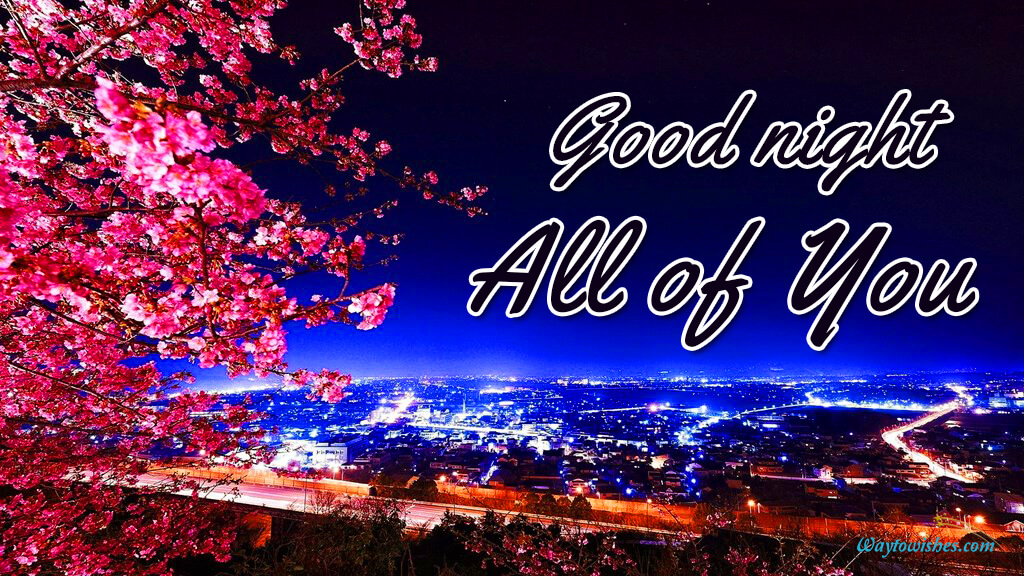 Good Night All of You