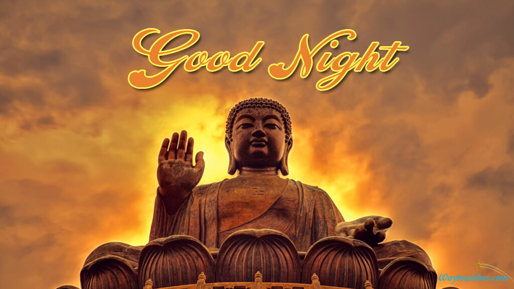 Good Night Buddha