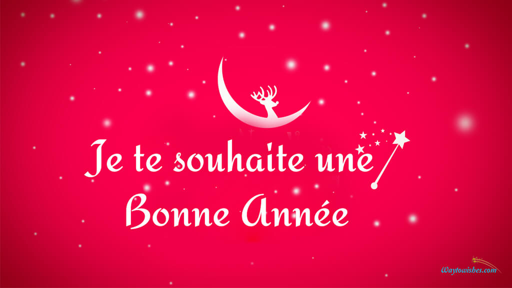 Wish You Happy New Year In French