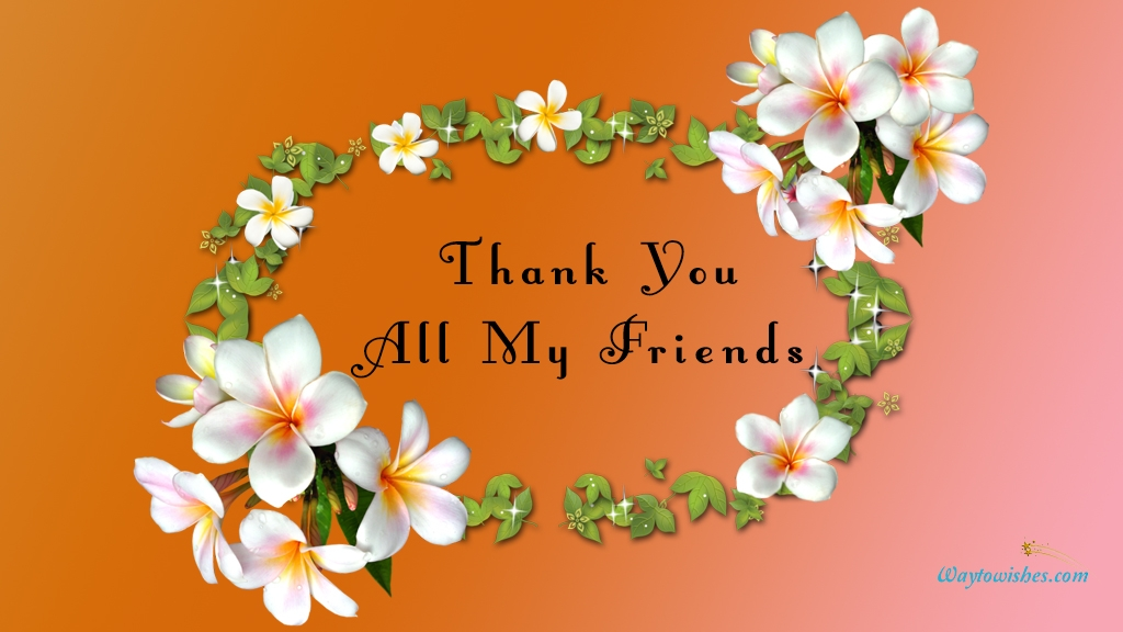 Thank You All My Friends