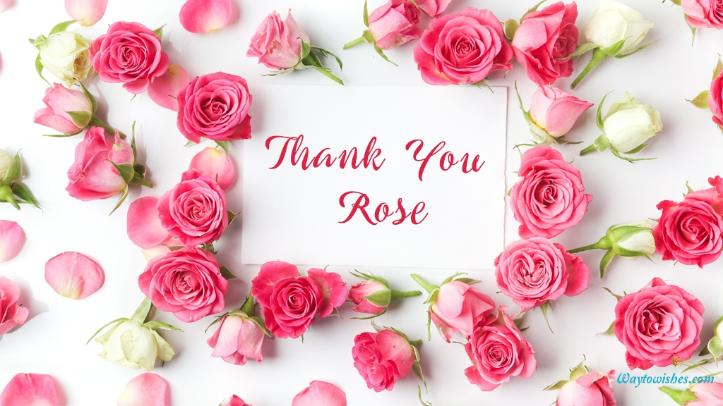 Thank You Rose