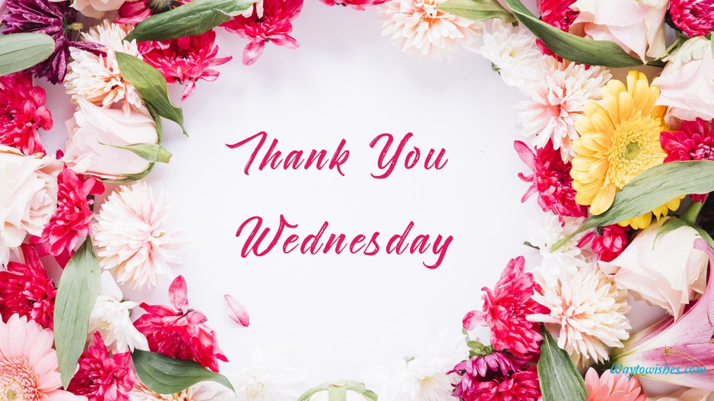 Thank You Wednesday