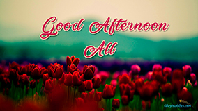 Good Afternoon All
