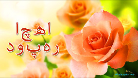 Good Afternoon In Urdu