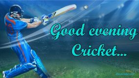 Good Evening Cricket