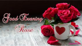 Good Evening Dear Rose
