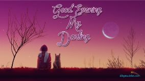 Good Evening My Darling