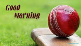 Good Morning Cricket