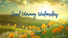 Good Morning Happy Wednesdays
