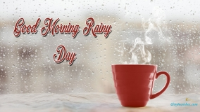 Good Morning Rainy Day