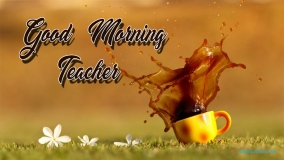 Good Morning Teacher
