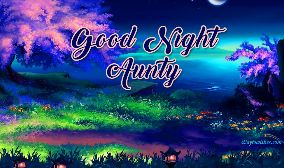 Good Night Anni
