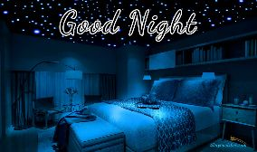 Good Night Bed