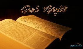 Good Night Bible