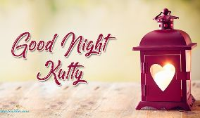 Good Night Kutty