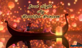 Good Night My Beautiful Princess