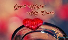 Good Night My Crush