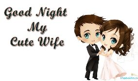 Good Night My Cute Wife