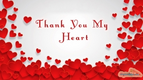Thank You My Heart